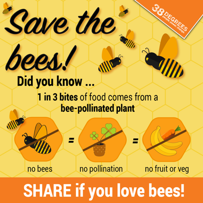 SHARE so everyone knows how important they are! They may be tiny but bees are crucial to us all. They pollinate much of the food we love and contribute millions to our economy. Fonte: https://home.38degrees.org.uk/