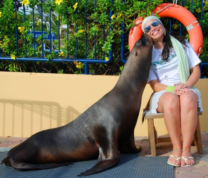 me and the sea lion