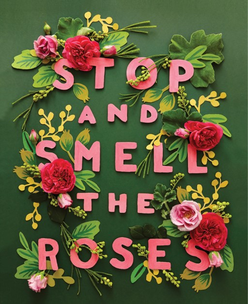 Stop-and-smell-the-roses-512x627